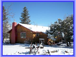 Wolf Creek Ski Cabin-20 Minutes to Lifts - South Fork vacation rentals