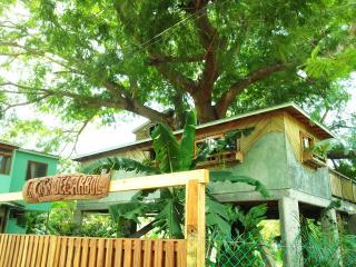 La Casa Del Arbol - Puerto Escondido vacation rentals