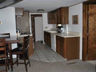 #4 Chippewa Lake Apartment W/ Dock for your boat. - Chippewa Lake vacation rentals