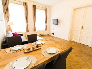checkVienna - Liechtensteinstrasse - Vienna vacation rentals
