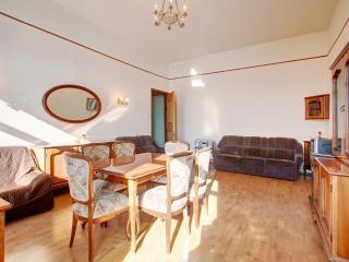Ideal 2 bedroom Apartment (300) - Saint Petersburg vacation rentals
