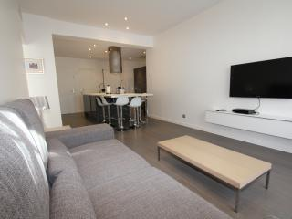 Cannes center 3 bedroom congress & weekly rentals. - Cannes vacation rentals