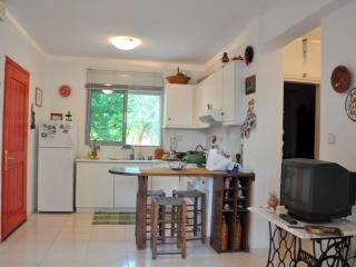 Warm comfy summer house in Fourka - Halkidiki vacation rentals