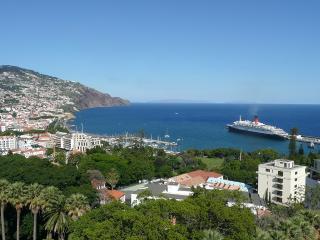Palms Palace - Funchal vacation rentals