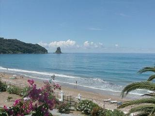 Villa Maria Beach Apartment 2-3 Persons 50m from b - Agios Gordios vacation rentals