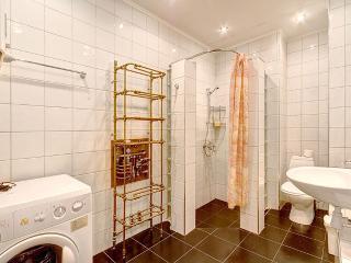 1 bedroom on Nevsky prospect, 60 (276) - Saint Petersburg vacation rentals