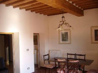 L'ORTENSIA (Monte San Savino) - Monte San Savino vacation rentals