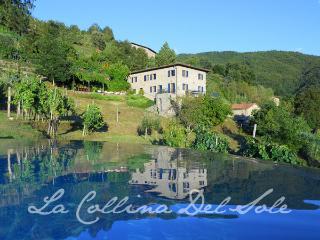 Villa and award winning salt water infinity pool - Fosciandora vacation rentals