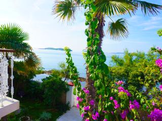 Luxury beachfront villa with private pool - Southern Dalmatia vacation rentals