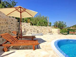 Dalmatian stone villa with pool - Ston vacation rentals