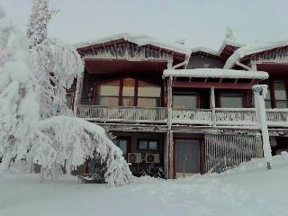 Bright 6 bedroom Saariselka Chalet with Deck - Saariselka vacation rentals