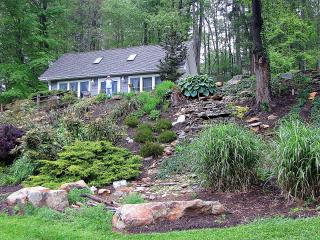 RE-FOCUS COTTAGE - bird sanctuary close to all! - Asheville vacation rentals