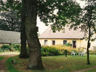 Comfortable Farmhouse Barn with Internet Access and Dishwasher - Kjellerup vacation rentals
