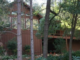 Deer Mountain Lodge, hot tub, no cleaning fee! - Yosemite Area vacation rentals
