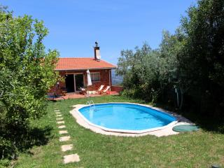 Holidays house in Douro Touristic Region - Resende vacation rentals