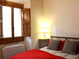 Casa di David - Florence vacation rentals