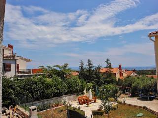 TH00441 Apartment Wanda / Studio A2 - Liznjan vacation rentals