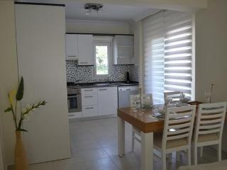 LUXURY 3 Bedroom Duplex - Aegean Region vacation rentals