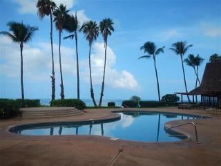 Nice Condo with Internet Access and Shared Outdoor Pool - Molokai vacation rentals
