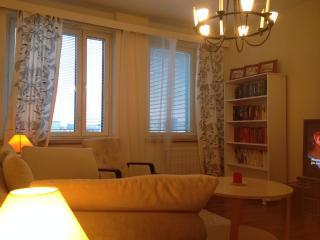 Jyväskylä downtown Apartment - Jyväskylä vacation rentals