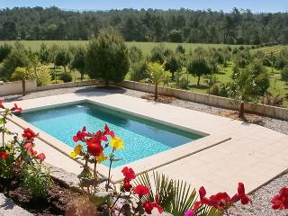 Gite with private garden and pool - Mormoiron vacation rentals