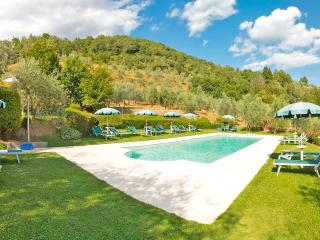 Farmhouse apartments 3 bedrooms with pool - Loro Ciuffenna vacation rentals