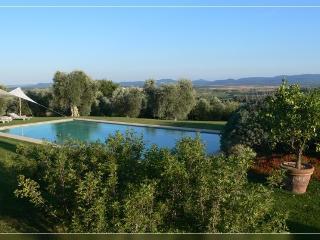 la pietraia piscina sauna orto mare 8 km 8 persone - Magliano in Toscana vacation rentals