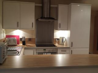 City Space 2 Bed Apt - Nottingham vacation rentals