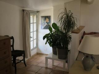 Charmant  appartement dans le centre historique. - Aix-en-Provence vacation rentals