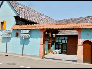 Nice apartments for 4 to 6 near Strasbourg - Bas-Rhin vacation rentals