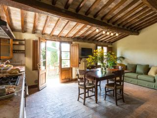 Montecaprili farmhouse: Pozzo apartment - Montalcino vacation rentals