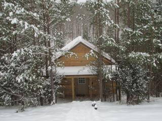 Cabin In The Woods; Secluded, Huge Hot Tub! - London vacation rentals