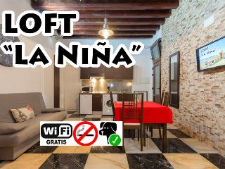 Brand new in Old City centre! -LOFT LA NIÑA- - Cadiz vacation rentals