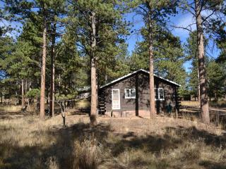 Knotty Pine - 2 bed cabin with views - Estes Park vacation rentals