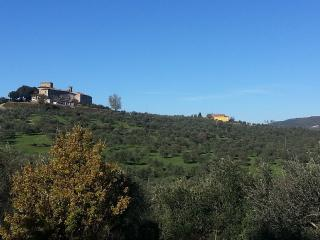 2 bedroom House with Internet Access in Rignano sull'Arno - Rignano sull'Arno vacation rentals
