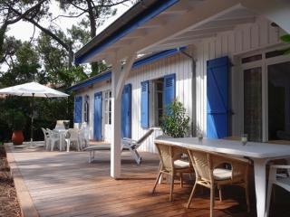 Cap Ferret 44 hectare holiday home - Cap-Ferret vacation rentals