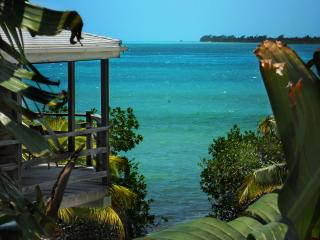 AMAZING SEAFRONT VILLA - Caye Caulker vacation rentals
