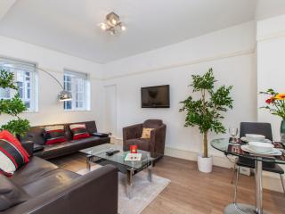 London City Style, Location & Fun - free WIFI - London vacation rentals