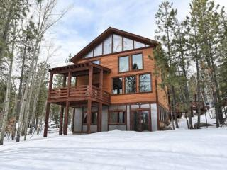 Leaning Tree Lodge - New Construction! - Black Hills and Badlands vacation rentals