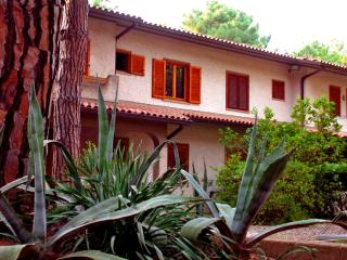 Appartamento Via Triglia - Principina a Mare vacation rentals