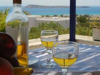 Résidence Velanies-Houses maison de type B - Golden Beach vacation rentals