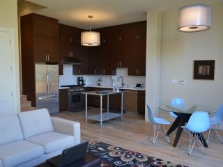 Noe Valley Luxury Modern - San Francisco vacation rentals