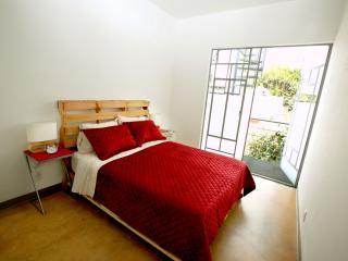Apto in Roma neighborhood - Mexico City vacation rentals