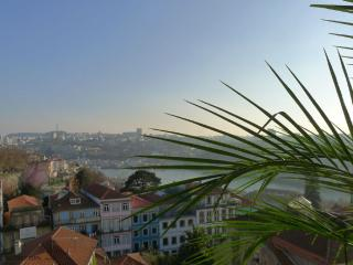 RE1- Superb 4Br apt, river view, elevator, AC - Porto vacation rentals
