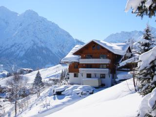 Nice Condo with Internet Access and Mountain Views - Hirschegg vacation rentals