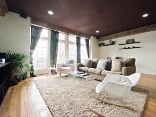 GEORGOUS APT - CONVENTION-SHOPPING - San Francisco vacation rentals