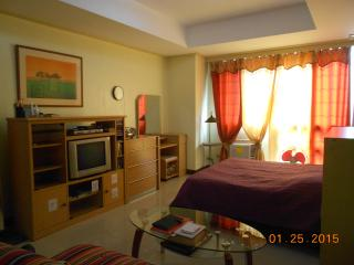 Downtown Manila Bay View Studio - Manila vacation rentals