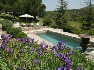 Nice House with Internet Access and Wireless Internet - Buoux vacation rentals