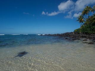 Turtle Beach One - 2 bedroom ,1 enclosed lanai (or 3rd bedroom),1 bath - Haleiwa vacation rentals