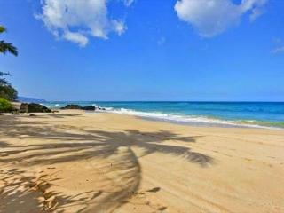 Immaculate, Beachfront and Bright, starting at $350 per night! - Haleiwa vacation rentals